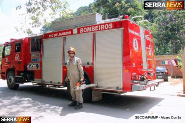 Corpo de Bombeiros atua na prevenção de quedas das árvores em tempestades